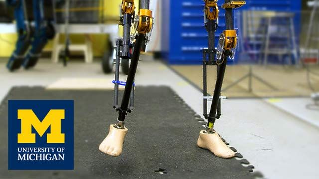 University of Michigan Develops Controls for Bipedal Robots with Model-Based Design