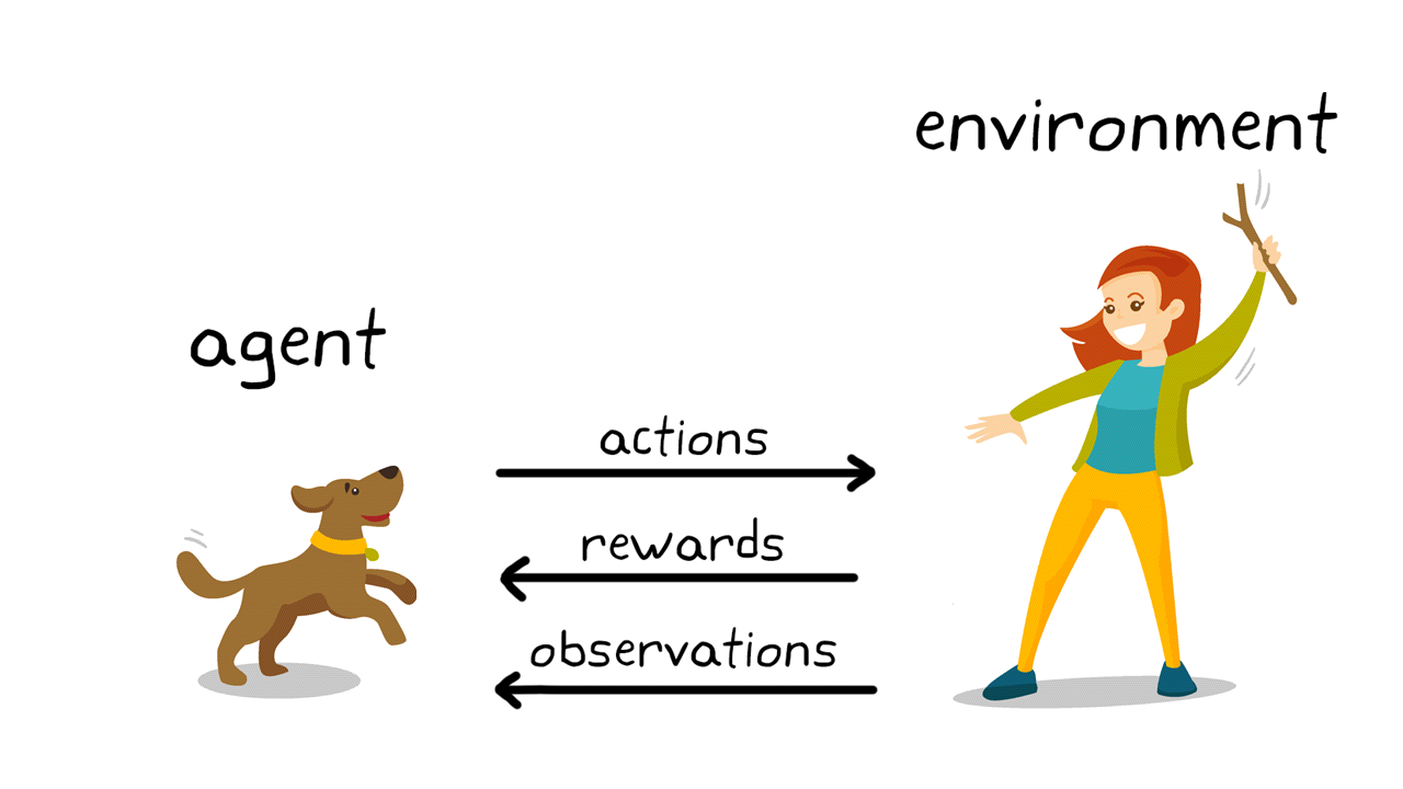 Figura 2. Il reinforcement learning nell'addestramento dei cani.