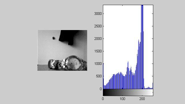 Acquisition Toolbox utilizzato con Image Processing Toolbox per la visualizzazione di feed video con un istogramma in tempo reale.